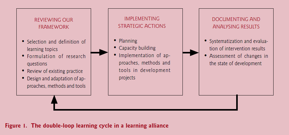 Double-loop learning cycle in a learning alliance