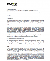 """CAFOD. (2011). Terms of Reference. End of Programme Independent Evaluation of DFID GPAF007 Programme: """"Mitigating the impact of the economic downturn on vulnerable groups"""". http://www.alnap.org/pool/vacancies/cafod-dfid-gpaf-evaluation-tor-july-..."""