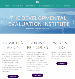The Developmental Evaluation Institute (n.d.) Retrieved from: https://www.developmentalevaluation.institute/