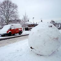 Large Snowball, London N14 photo by Christine Matthews