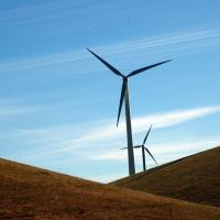 California's largest wind farm, Altamont pass photo by kqedquest